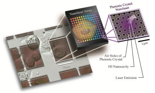 NanolasersForPrecisionImaging