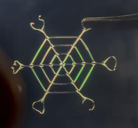 ScientistsSpinSilkProteinComplexMaterials