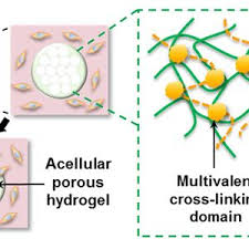 NanocompositeHitsTheRightNoteForBoneRepairI