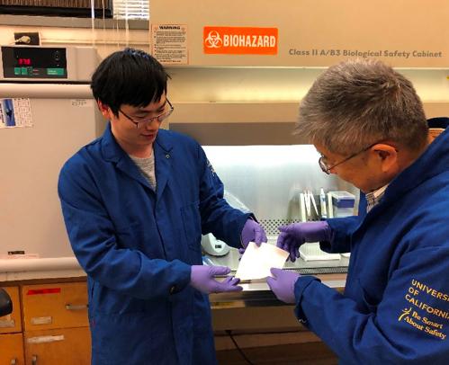 NanofibrousMembraneCouldOfferBioprotection