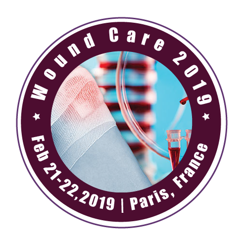 Wound Care 2019 Logo