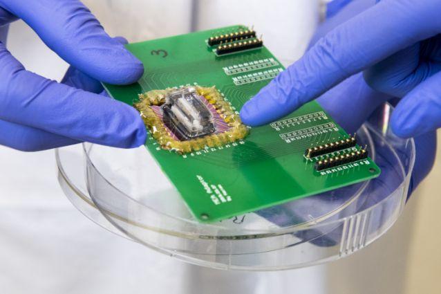 HeartAttackOnAChipScientistsModelConditionsOfIschemiaOnAMicrofluidicDevice
