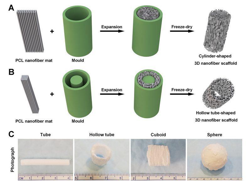 NanofiberMembranesTransformedInto3DScaffolds