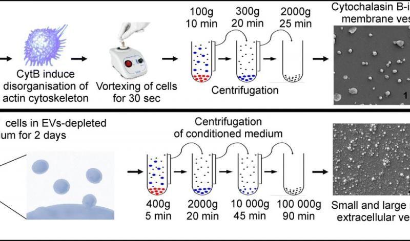 BiomedicalInstrumentBasedOnMicrovesicles
