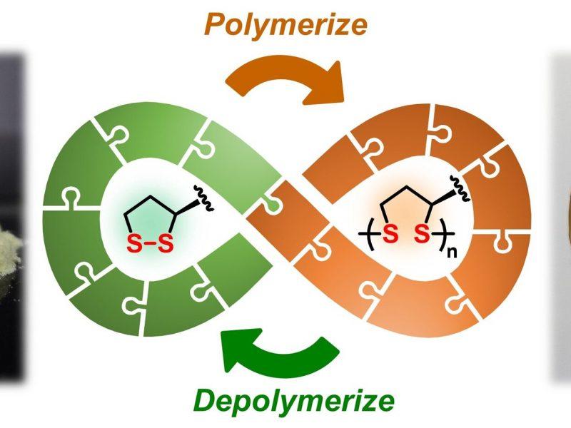 MoleculeFromNatureProvidesFullyRecyclablePolymers
